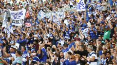 Canterbury v Bulldogs ANZ Stadium